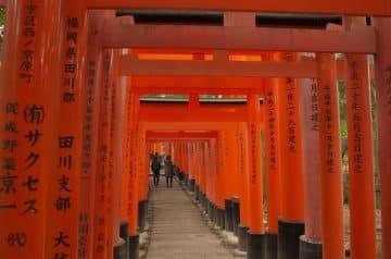 ตามรอยหนังญี่ปุ่น